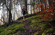 Entrainement running trail : le sondage