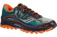 Quelles chaussures de trail pour Bertrand ?