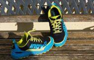 Test chaussures Inov8 290 V2