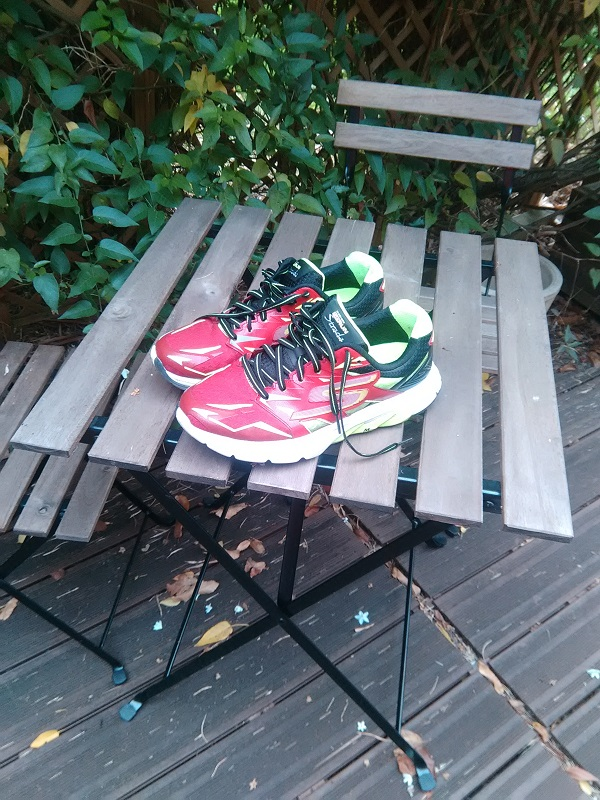 chaussres Skechers Go Run Strada