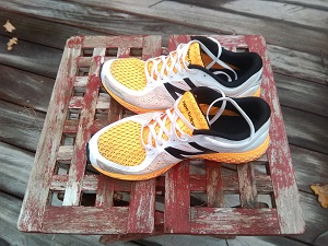 Mes chaussures New Balance ZANTE V2