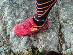 Cette chaussure Brooks Cascadia 10 m'a accompagné durant de long mois. © Testeurs Outdoor