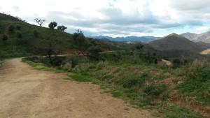 Voilà un des chemins autour de l'hotel pour découvrir la gamme Kalenji Running. © Testeurs-Outdoor