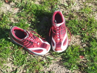 chaussure trail tecnica diablo max,chaussure de trail