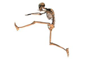 La course minimaliste : c'est bon pour votre squelette ? © Timo Darco - Fotolia.com